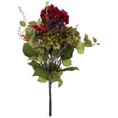 Assorted Hydrangea Bush