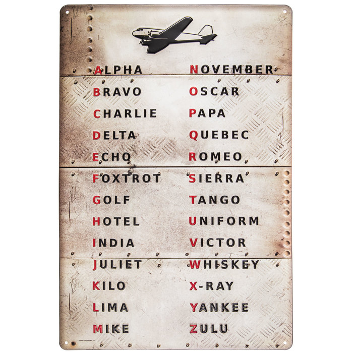 Airplane Sign Kids Door Sign Kids Name 6 x 12 Sign Baby Nursery Wall Decor Lion Flying Airplane Personalized Sign