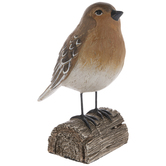Brown Bird On Log