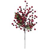 Burgundy & Red Holly Berries Pick
