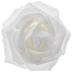 White Rose Blooms - 2 3/4