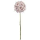 Light Pink Allium Pick