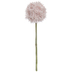 Light Pink Allium Pick