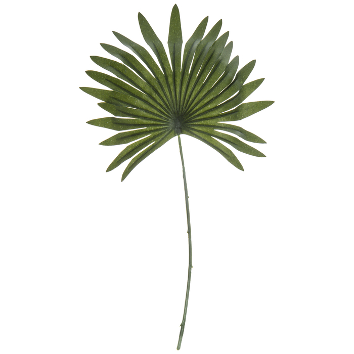Mini Palm Leaf Pick Hobby Lobby 1722610
