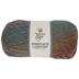 Splash Of Color Yarn Bee Fireplace Comfort Yarn
