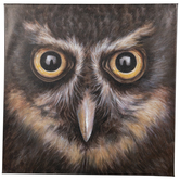 Owl Close-Up Canvas Wall Decor