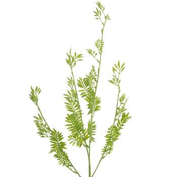 Green Mini Fern Leaf Stem