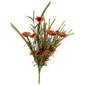 Red & Orange Wild Daisy Bush