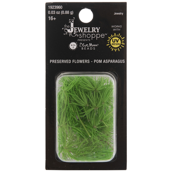 Green Preserved Pom Asparagus Filler