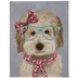 Labradoodle With Glasses Canvas Wall Decor