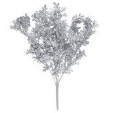 Glitter Boxwood Bush