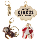 Not My Circus Charms