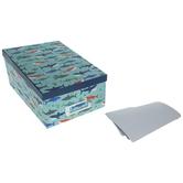 Shark Photo Storage Box
