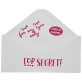 Top Secret Envelope Metal Wall Container