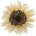 White Sunflower Pick
