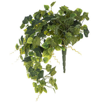 Moss Green Mini Grape Ivy Bush