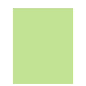 "Celery Green Matboard - 32"" x 40"""