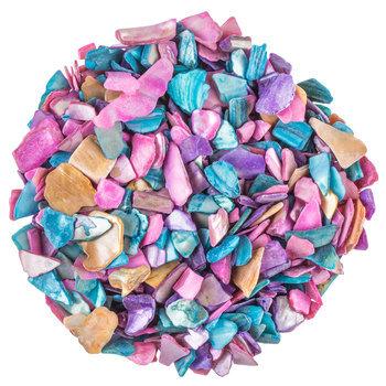 Seashell Chips