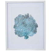Blue Sea Fan Framed Wall Decor