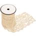 Ivory Stretch Lace Trim - 3 1/2