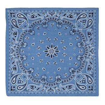 Light Blue Paisley Bandana