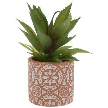 Succulent In Mosaic Terra Cotta Pot