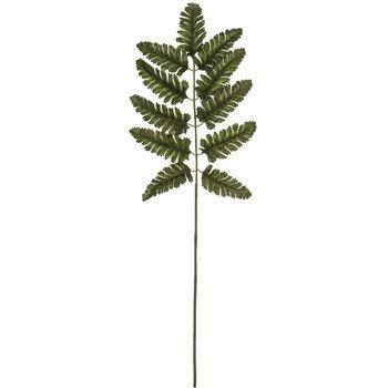 Green Leather Leaf Fern Branch