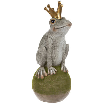 Frog Prince On Mossy Rock