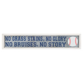 No Grass Stains No Glory Metal Wall Decor