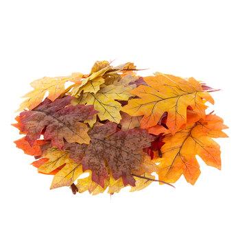 Fall Mix Oak Leaves