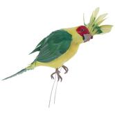 Green & Yellow Cockatoo