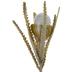Cream Protea Stem