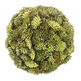 Soft Green Grass Sphere