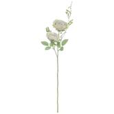Gray, Green & Purple Rose Stem