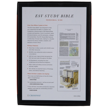 Brown Etched Swirl ESV Study Bible