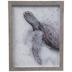 Gray Watercolor Sea Turtle Framed Wood Wall Decor