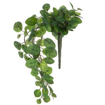Green Mini Boxwood Bush