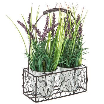 Lavender Plants In Metal Basket