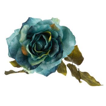 Open Rose Stem