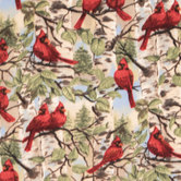 Cardinals Anti-Pill Fleece Fabric