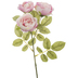 Blush Diana Tea Rose Stem