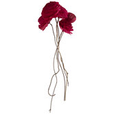 Sola Rose Bundle