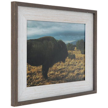 Bison Framed Wall Decor