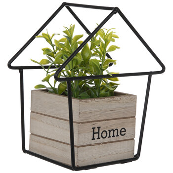 Home Potted Plant