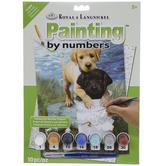 Fishin Buddies Paint By Number Kit