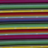 Serape Duck Cloth Fabric