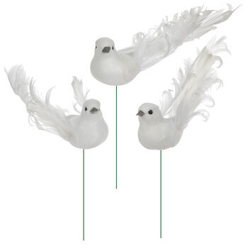 White Curly Tail Feather Birds