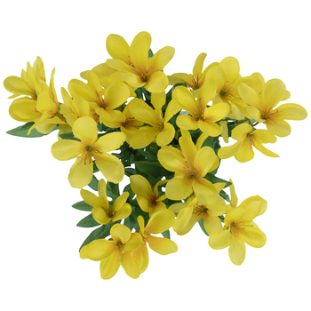 Yellow Crocus Bush