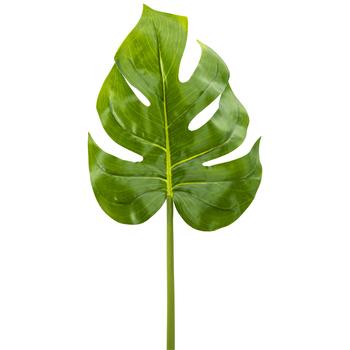 Monstera Leaf Stem
