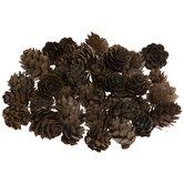 Brown Mini Pinecone Filler